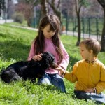 How to choose a dog for children?